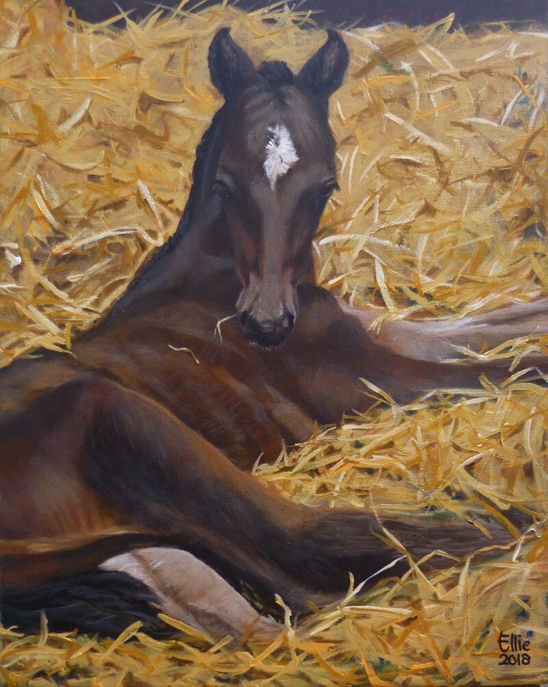 NERON - Paardenschilderij - Ellie Schrotenboer